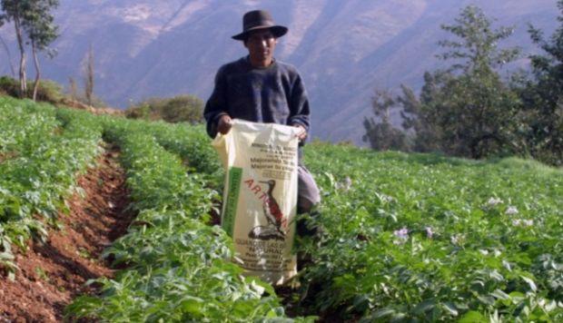 Agricultura apura titulación de predios con US  80 millones del BID c6f02e4f44b