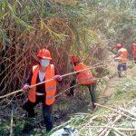 Inician actividades de mantenimiento de canales de riego en las cuencas de los ríos Lurín y Cañete