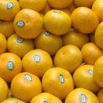 Cítricos peruanos tuvieron un crecimiento de 34% de volúmenes en exportación