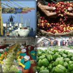 En Perú las Exportaciones cerraron el año en alrededor de USD 7.800 millones