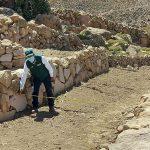 Agro Rural: Rehabilitan andenes para convertirlos en suelos agrícolas de alta productividad en Tacna