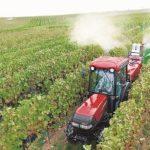 Renting agrícola: Una oportunidad para mantener la competitividad de la industria